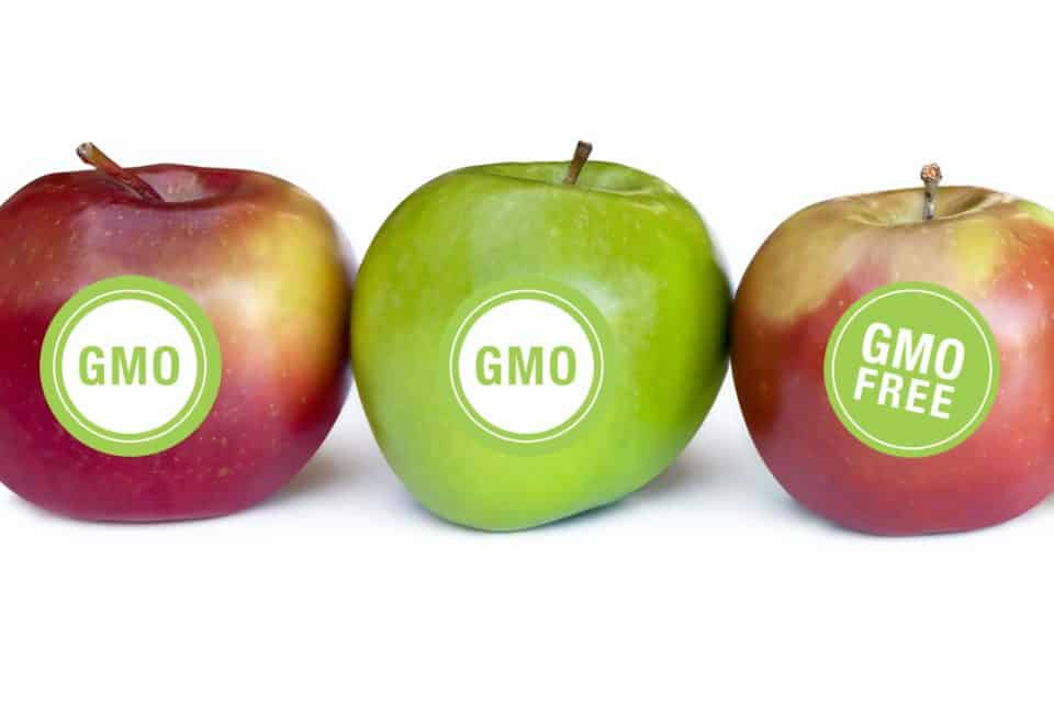 Special Report: GMO Perceptions, Knowledge and Labeling ...